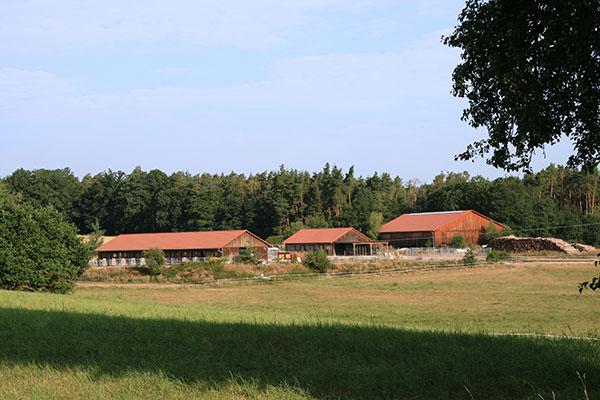 Reiterhof und Weide